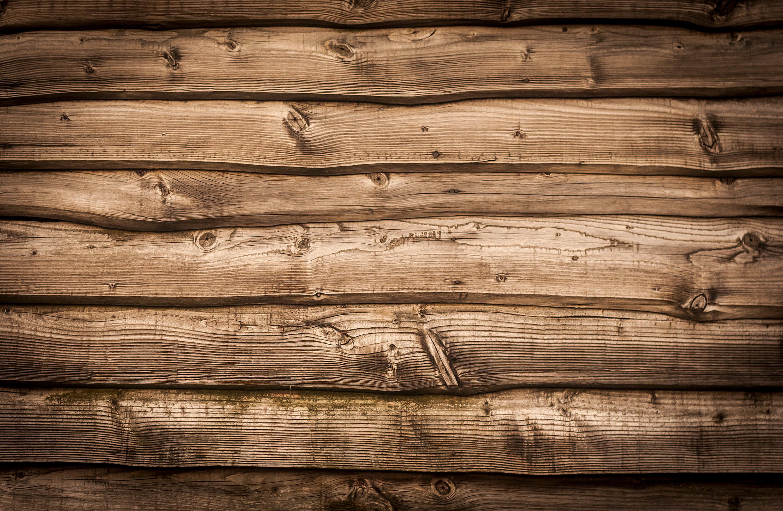 Bedroom Wallpaper Woodland