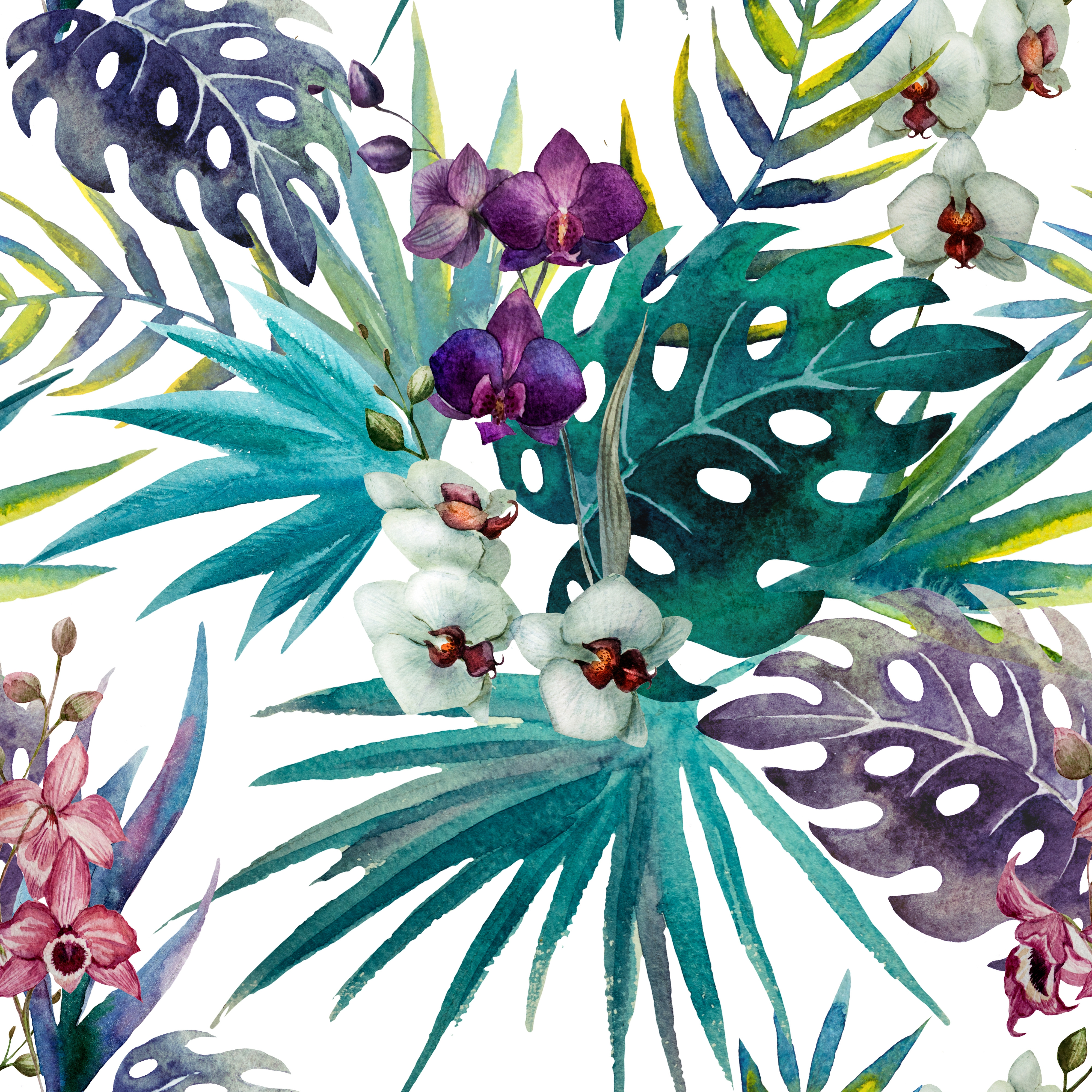 Cabbage Rose Flower Print Purple Abstract Art Kitchen Wall: Orchid Hibiscus Leaves Watercolour Tropics