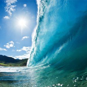 Surf / Sun / Sand