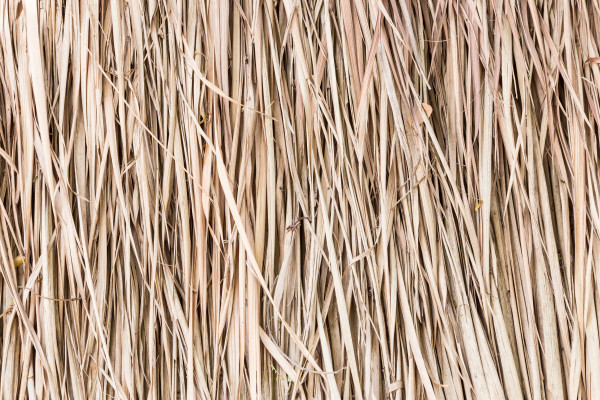 Thatch roof background, hay or dry grass background.
