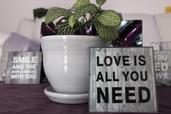 Quote – Love is all you need