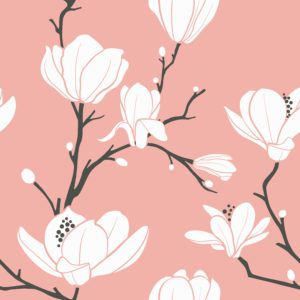 Pink Background with White Magnolias