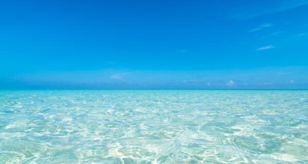 ビーチ・海